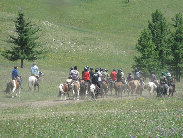 Horse riding in Terelj National Park
